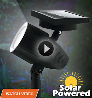 Adjustable Focus Solar Garden Spotlight - Wireless and Waterproof